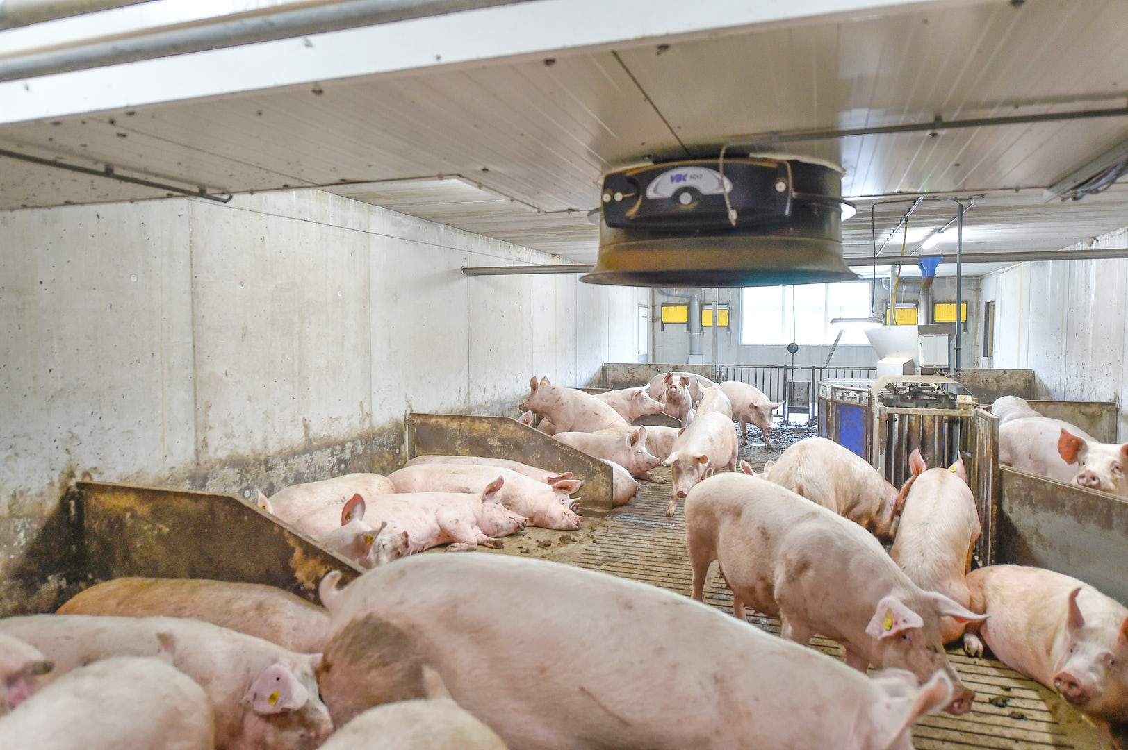 Pig solutions Manure Header 3