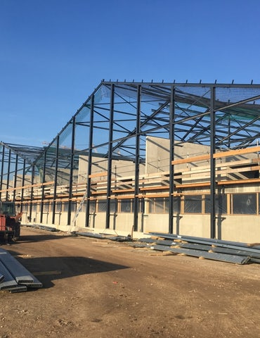 Work in progress! New pig farm3