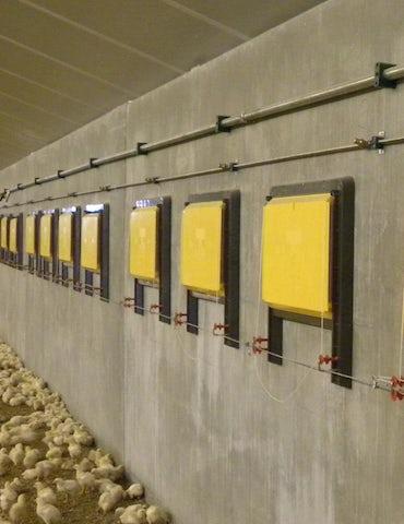 Vleeskuikens Tulderhof ventielen