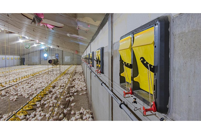 X stream inlets poultry