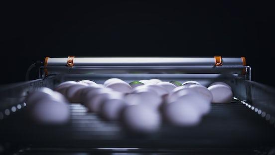 Egg Xact Egg counter MV 04097