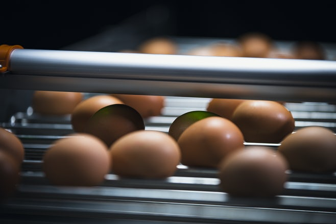 Egg Xact Egg counter MV 04204