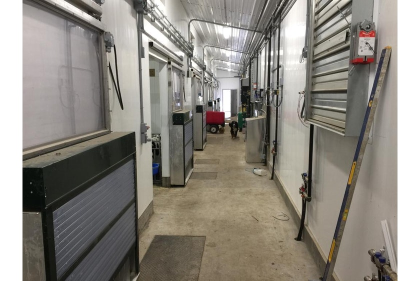 Canada8 Calf barns in Canada