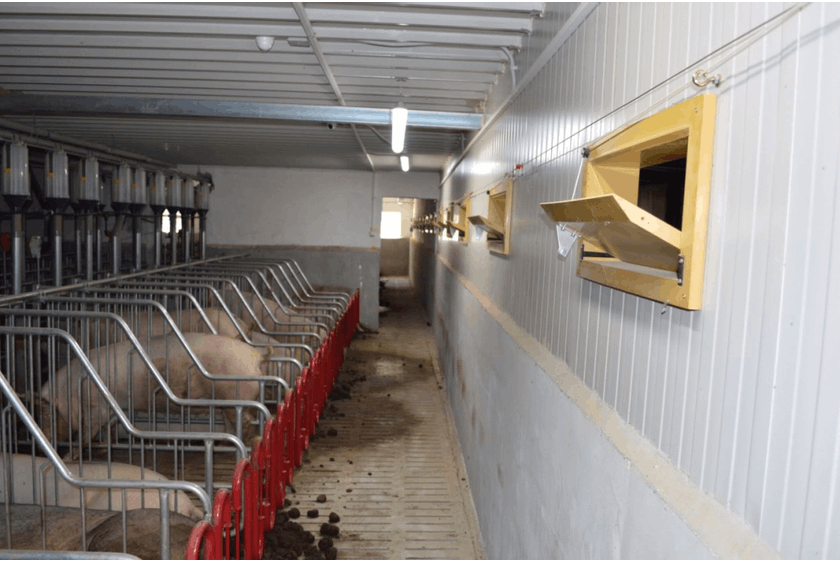 Bulgaria4 Sow barn with SmartFlow ventilation system in Bulgaria.jpg