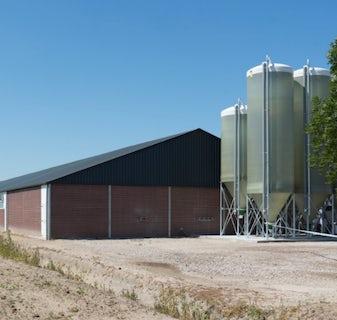 Netherlands1 Modern farm for 6000 finishers