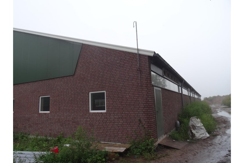 Netherlands1 Thomas Smart Flow maintains optimal climate for fattening pigs