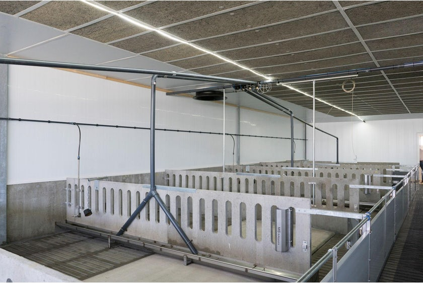 Netherlands5 Modern farm for 6000 finishers