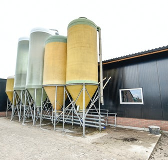 Netherlands6 Thomas successfully implemented at Dutch pig farm