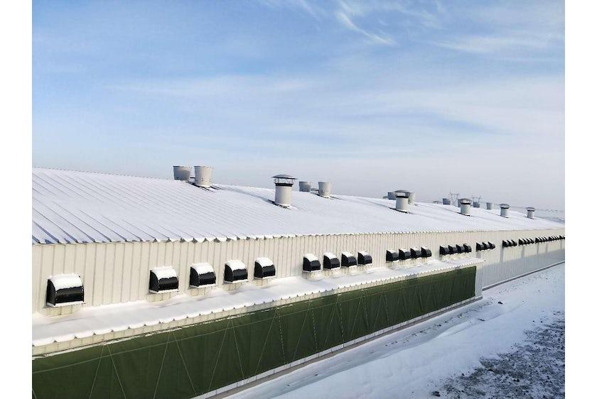 China6 Broiler farms in China