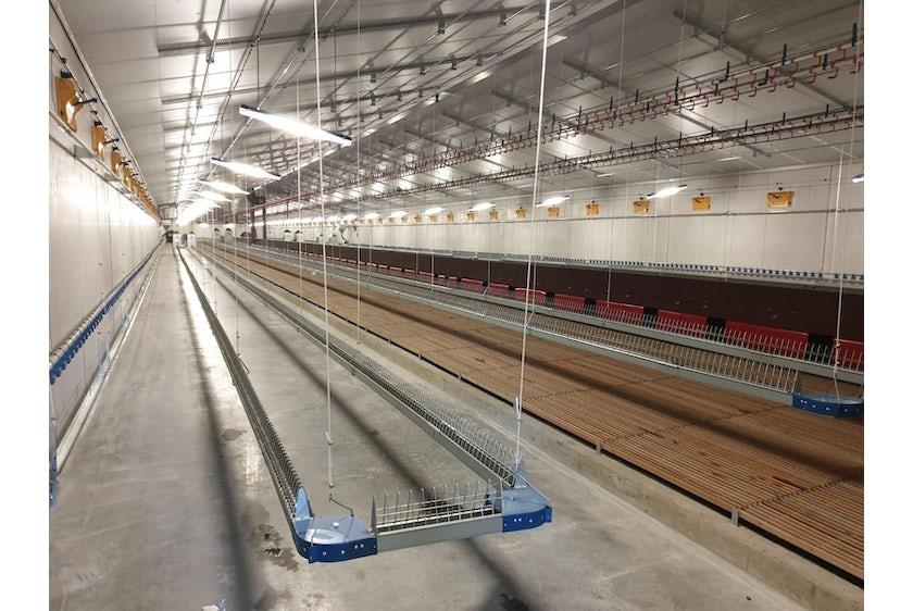 Belgium 3 Breeder barns Belgium 3