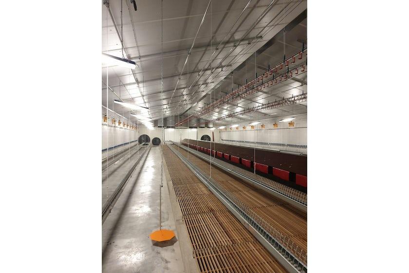 Belgium 9 Breeder barns Belgium 9