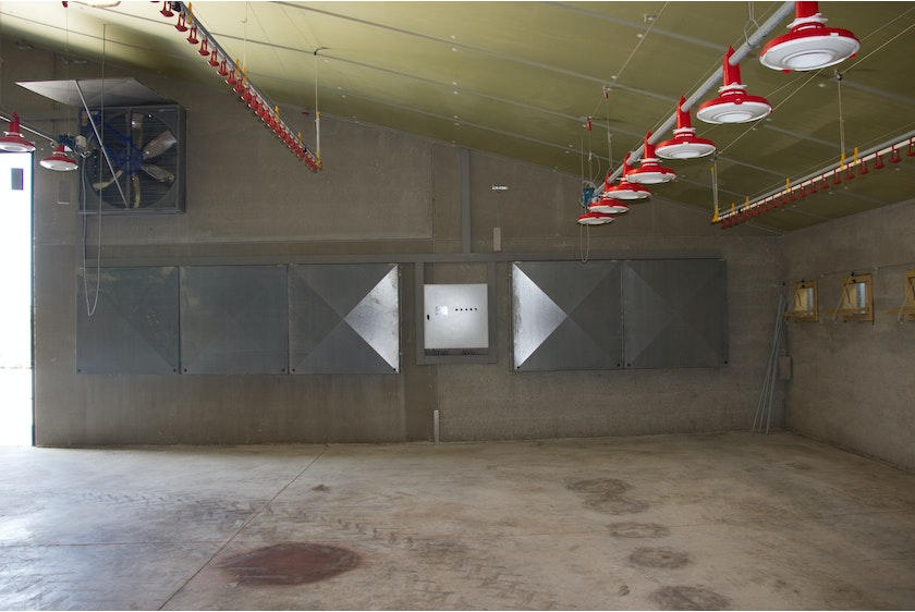 Belgium7 Broiler house in Belgium automated with Fortica