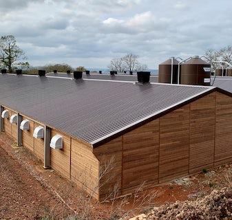 England1 Broiler Breeder Project