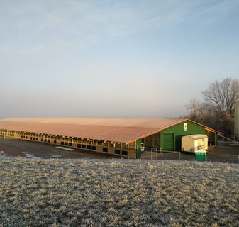 Germany1 New organic laying hen house