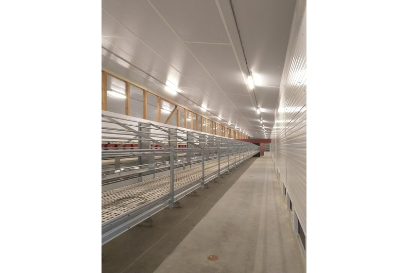 Germany12 New organic laying hen house