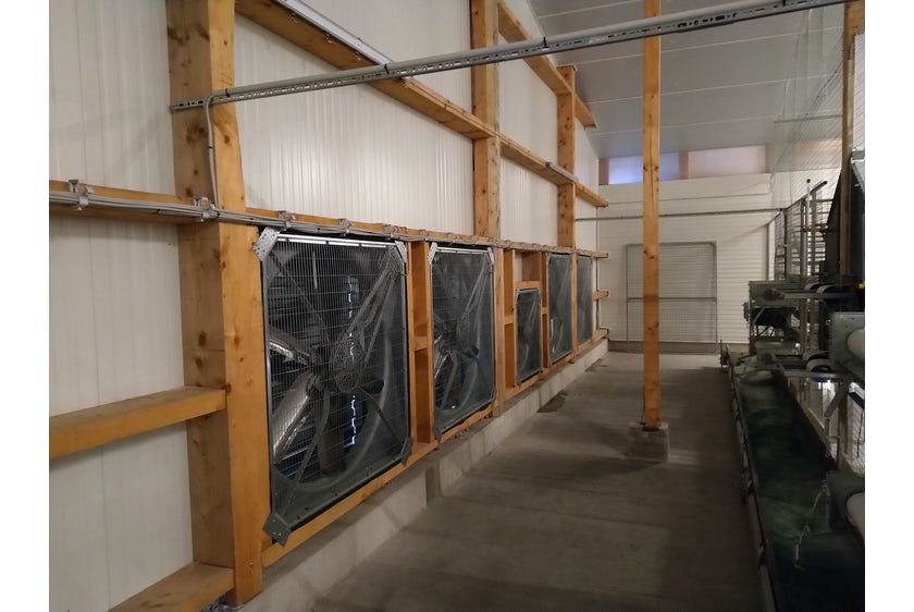 Germany6 New organic laying hen house