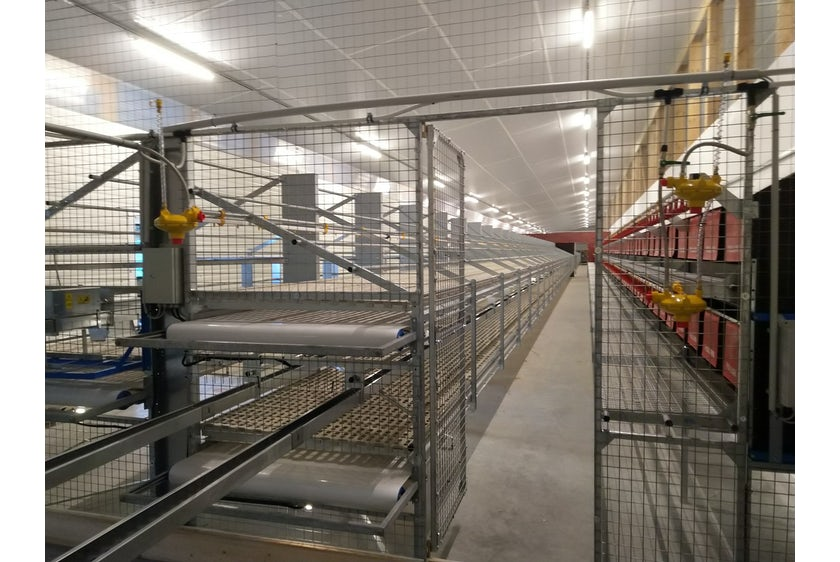 Germany8 New organic laying hen house
