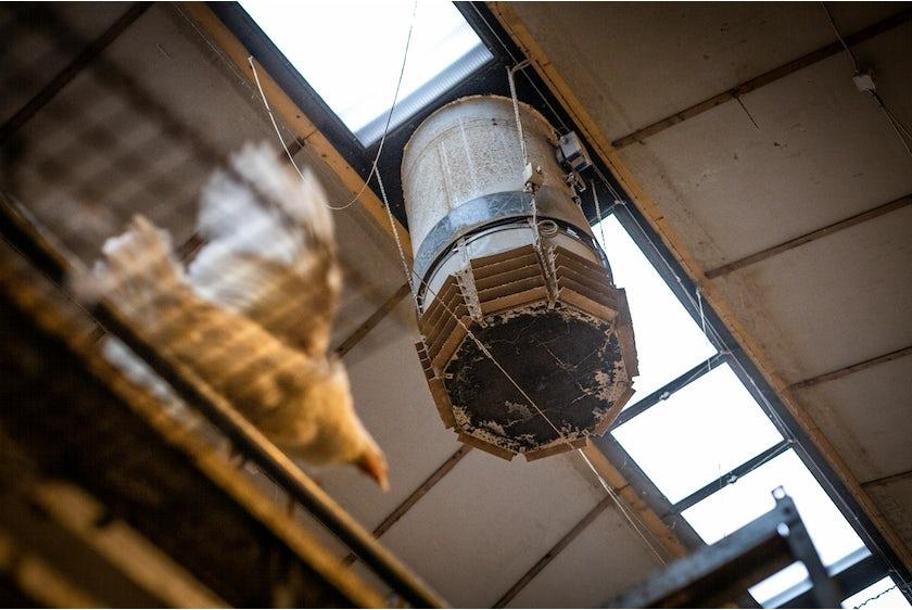 Hotraco vanleendert pluimvee klimaat airequalizer