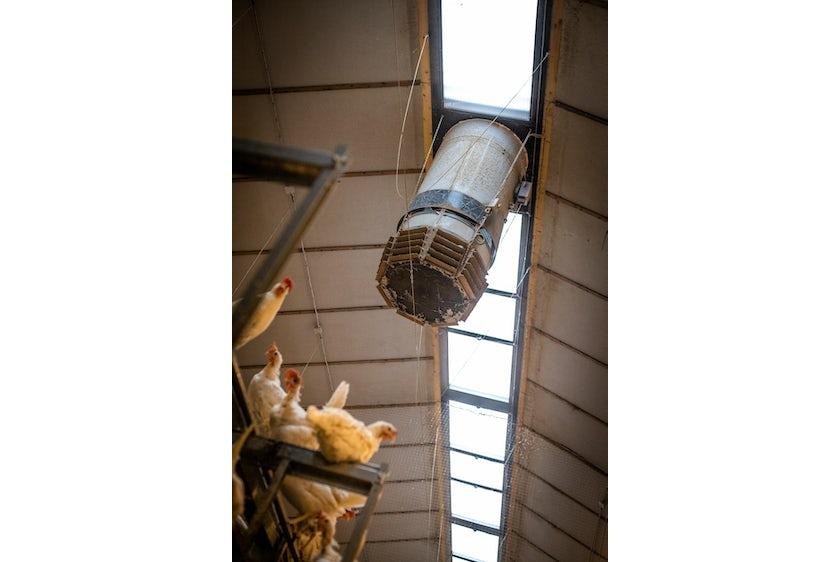 Hotraco vanleendert pluimvee klimaat airequalizer2