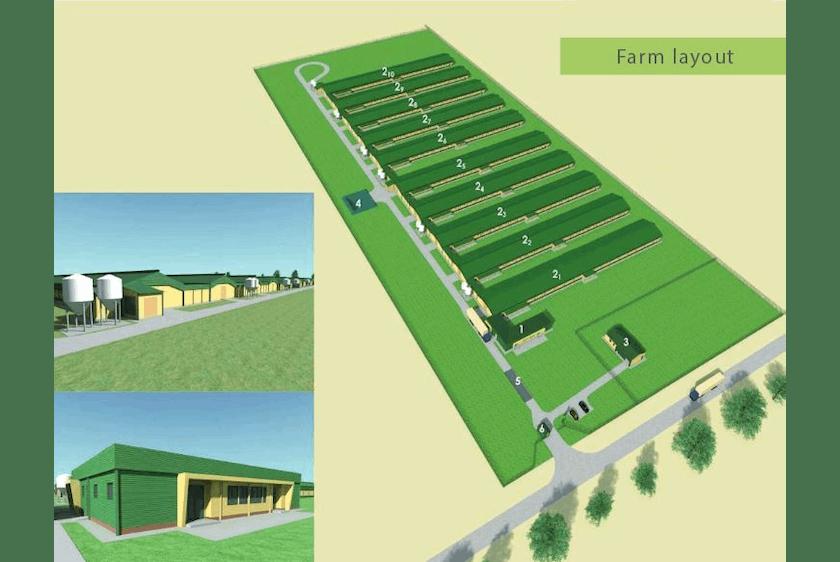 Hungary5-Modern-advanced-broiler-houses-in-Hungary.jpg