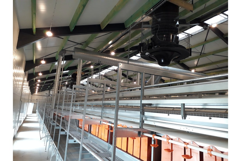 Netherlands 2 Equal pressure ventilation system in new laying hen house 2
