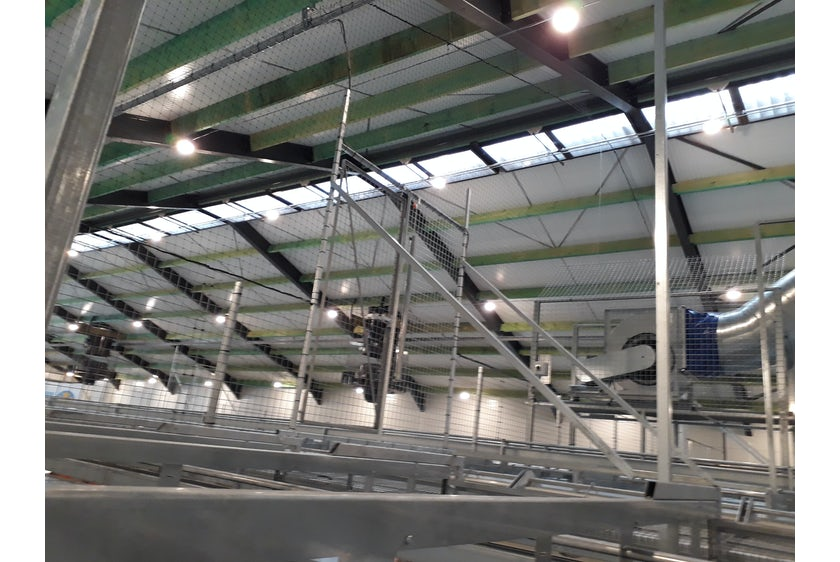 Netherlands 7 Equal pressure ventilation system in new laying hen house 7