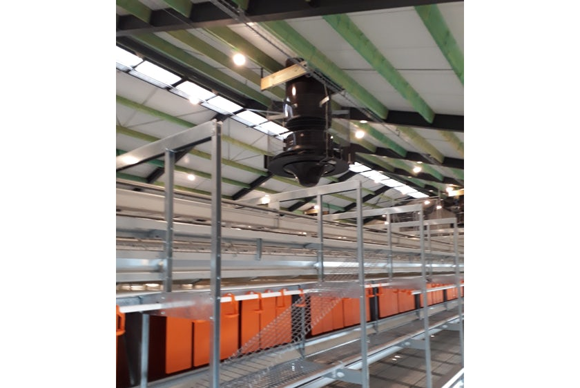 Netherlands 8 Equal pressure ventilation system in new laying hen house 8