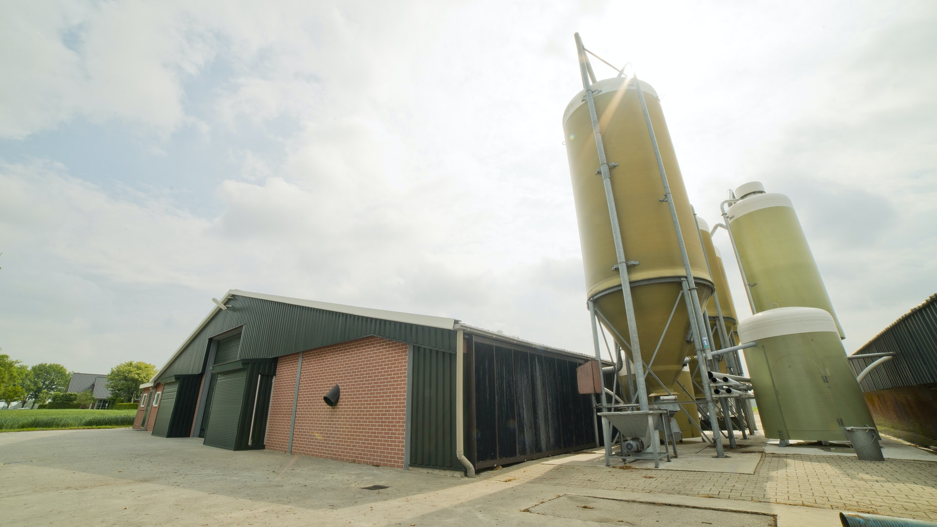 Netherlands1 Control Broiler Houses From One System