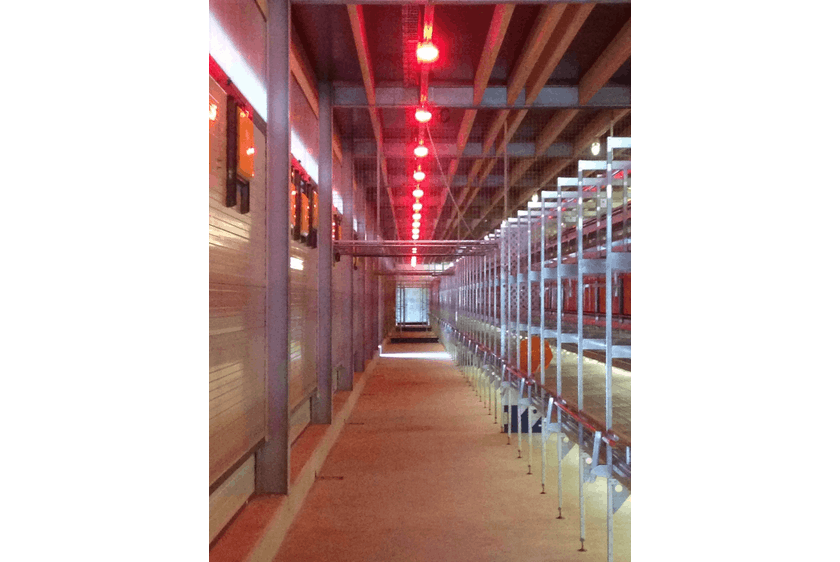 Netherlands1 New two-level poultry barn in Raalte.jpg