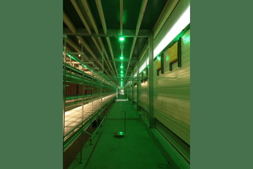Netherlands2 New two-level poultry barn in Raalte.jpg