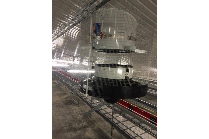 Scotland10 New laying hen barn in Scotland