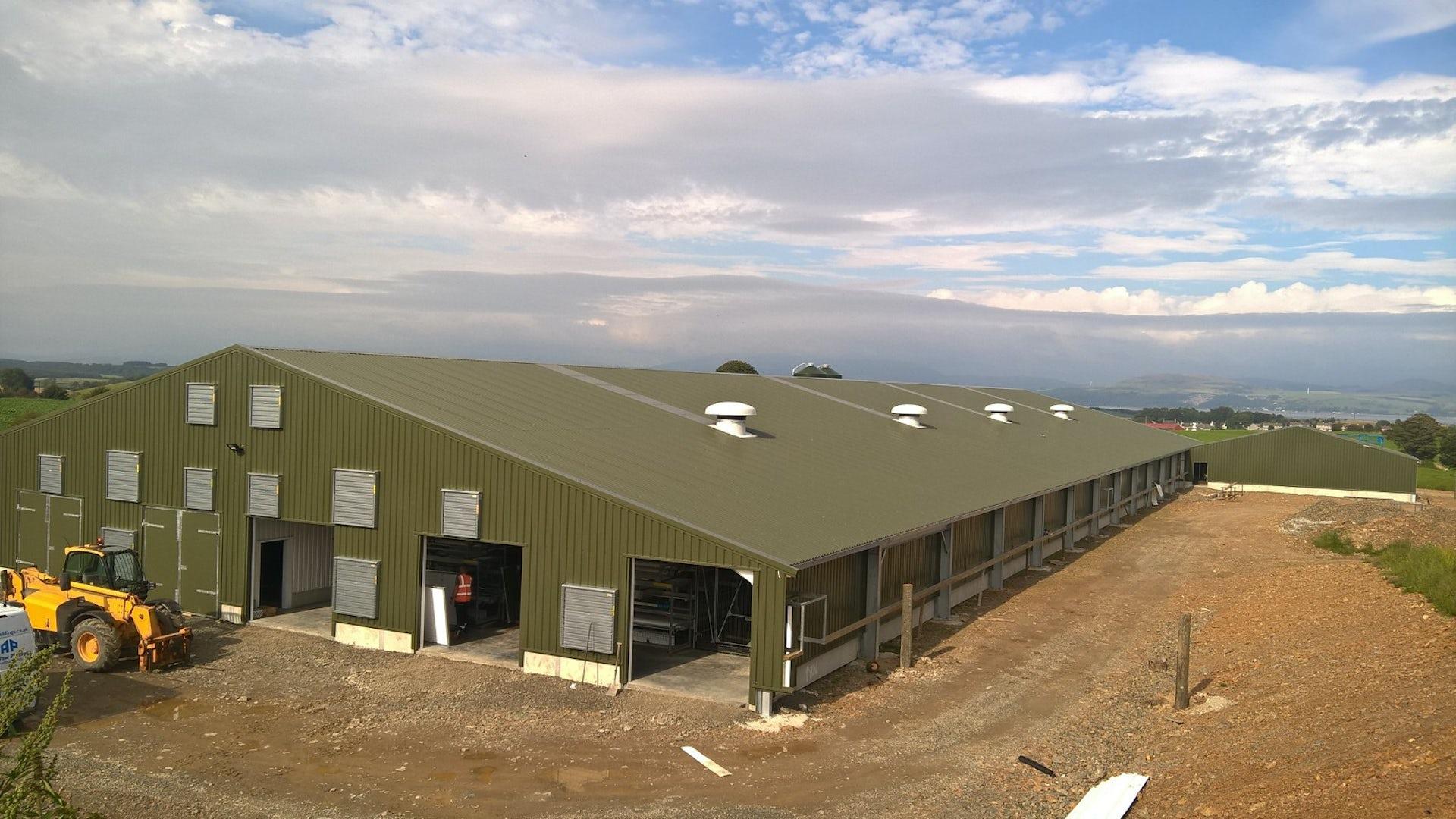 Scotland8 New laying hen barn in Scotland