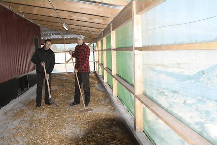 Sweden1-Fortica-successfully-applied-in-Swedish-free-range-chicken-farm.jpg