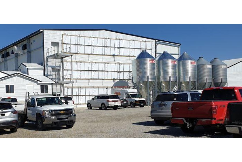 USA new layer farm in de US 3 floor avairy 1
