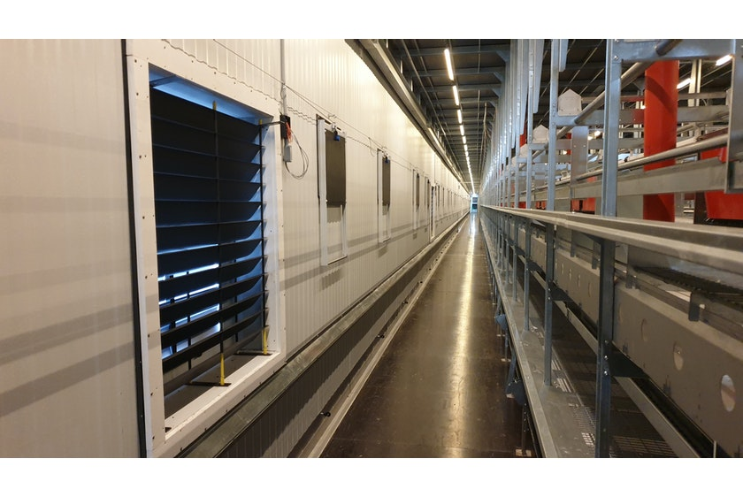 USA new layer farm in de US 3 floor avairy 5