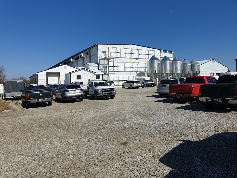 USA new layer farm in de US 3 floor avairy