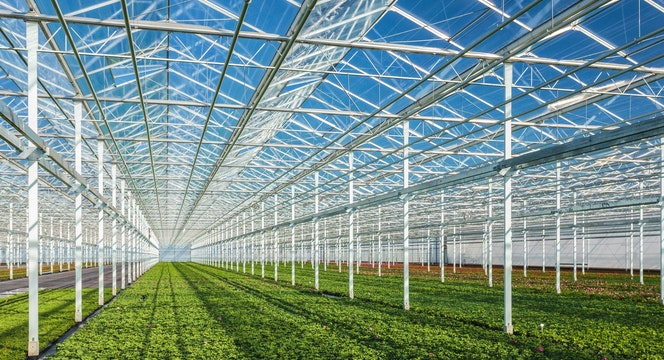 Solutions Horticulture