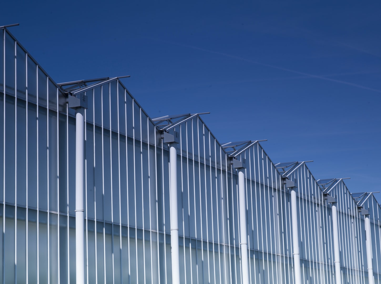 Greenhouse Gielen