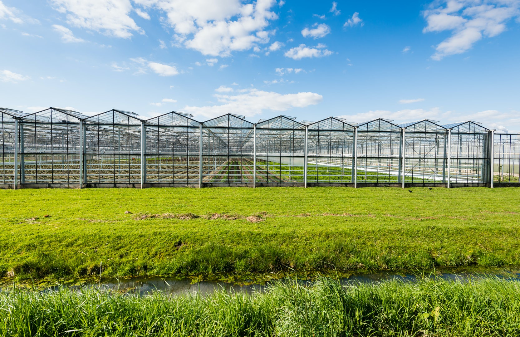 Greenhouse Kas Holland Hotraco