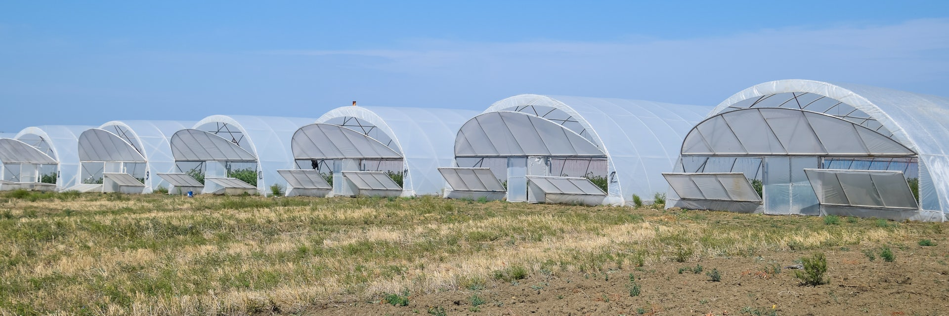 Greenhouses ventilation desert project
