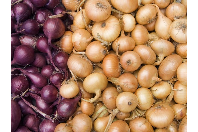 Homepage Solution 2 Onions