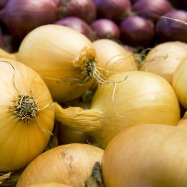 Red yellow onion perspective