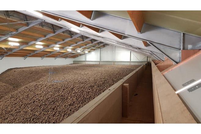 Potato Storage Geraats 08
