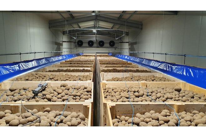 Germany Drosser potatoes Aribag Croptimiz r01